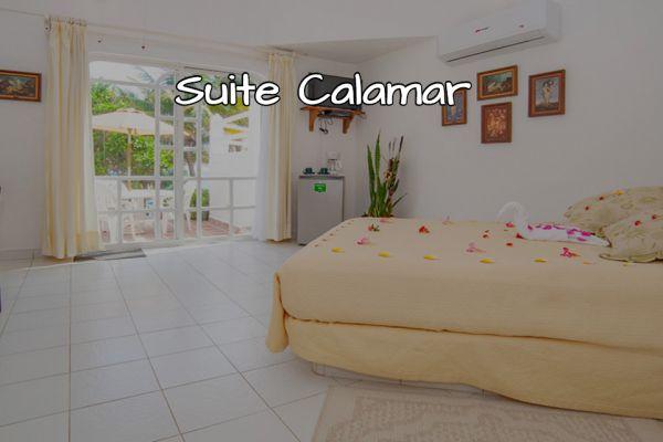 suite-calamar138E2AD1-E13A-0377-2B8D-F0693026EA5D.jpg