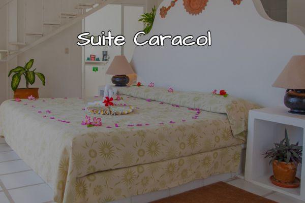 suite-caracol36137F1E-0BF4-6ADD-E971-5A697FB26F39.jpg
