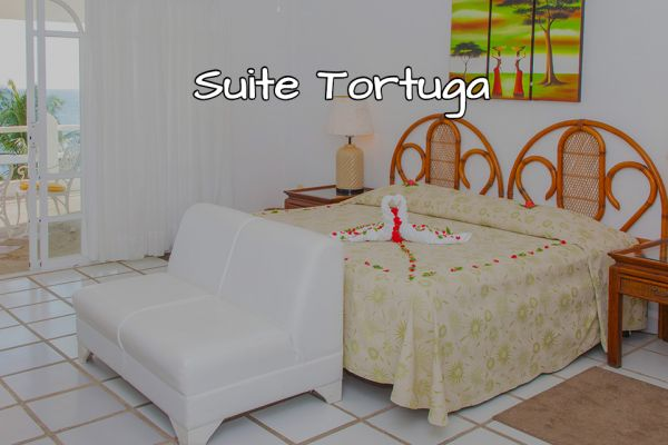 suite-tortuga8A7318FC-F81D-62E8-05ED-476C4A8FBF9E.jpg
