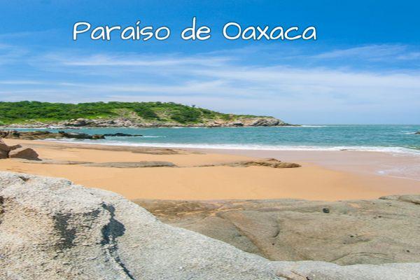 paraisooaxaca46D823E8-7748-3E04-7312-4A0FEF9F731E.jpg